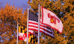 Maryland, American, and Ewing Oil flags